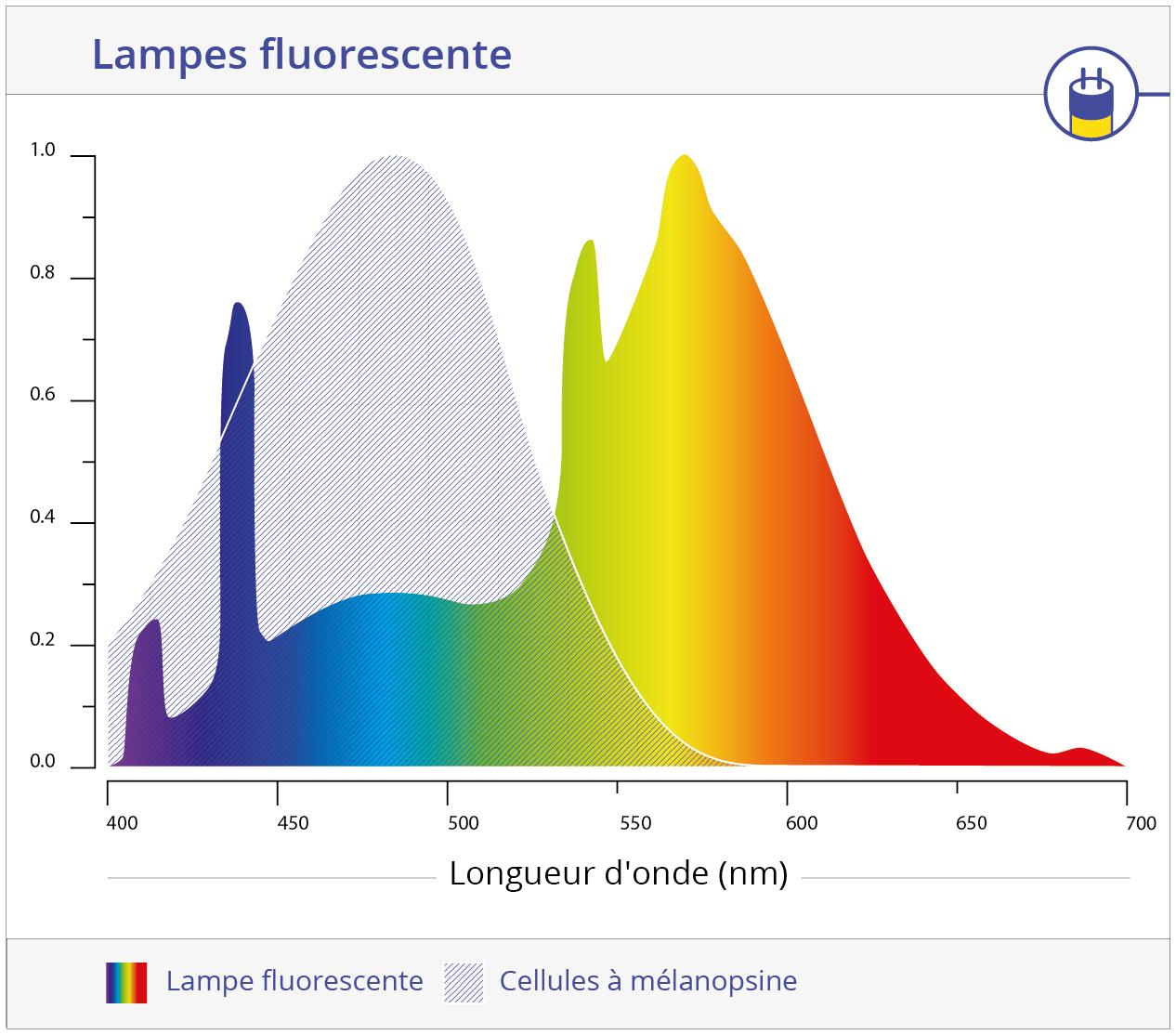 Cellule mélanopsine et fluorescence